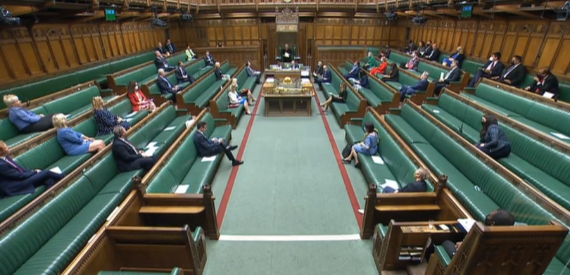 MPs attending the BLAW2021 Debate in the House of Commons.